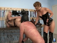 Goddess Brianna brings a slave in and demands that he tongue Stevie's ass to orgasm.